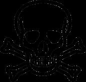 Piracy Skull