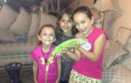 La iguana Bobby