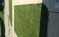 Half of front yard