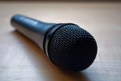 Microphone (Input)