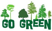 Why is going green important?