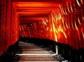 Fushimi Inara-taisha