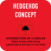 From Good to GREAT....Hedgehog Concept