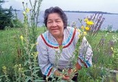 Cecilia Mitchell, Mohawk