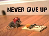 Never give up.....Ever