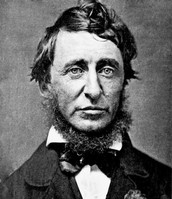 Picture of Thoreau later in life