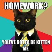 Homework Ninjas