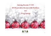 Saturday dec 19  Noon until Sunday Dec 20, 11:59 am
