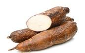 #2:  Cassava