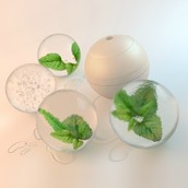 Recipe for the Perfectly Clear Ice Ball