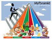 The Food Pyramid!