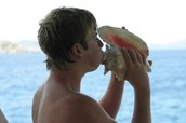The Conch