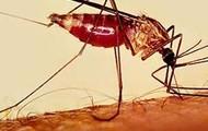 De Malaria mug