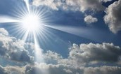 Why is sunlight important to the process of photosynthesis??
