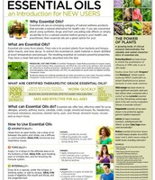Essential Oils an Introduction for New Users Tear Pad (50 Sheets)