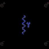 Feynman's Quantum Field Theory