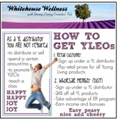 Your obligation-free fee-free wholesale account