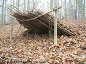 It's a shelter!