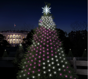 Experience the Beauty of Code by Lighting Up a Tree in the Nation's Capital!