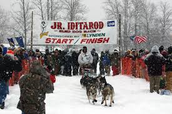 what is a junior iditarod