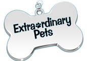 Premier Dog Walking Services With Excellent Prices.