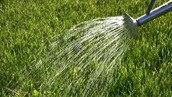 Watering your grass