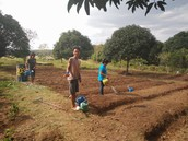 Visite d'une ferme-école avec Gawad Kalinga