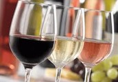 Ben jij ook benieuwd naar onze wijnen?
