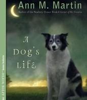 Read Aloud: A Dog's Life