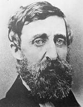 Henry David Thoreau's Major Works