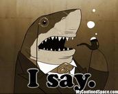 I Say