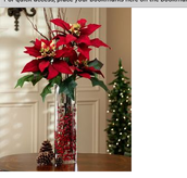 Poinsettias are commonly used
