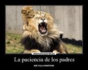 paciencia (: