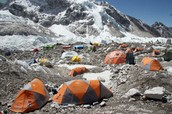 Holly Angelo's report on the expedition.