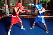 Boxing Teacher