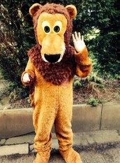 Please sponsor me in my Mascot Gold Cup Challenge