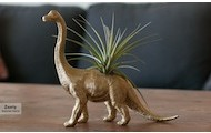 Dino Planter w/ Air Plan for $10