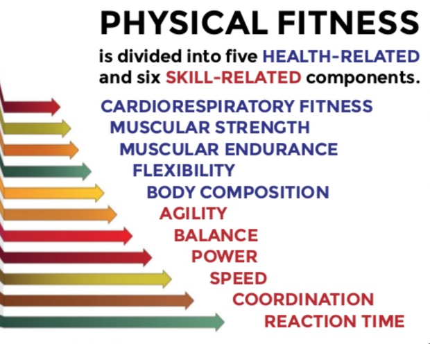 5 components of physical fitness definition