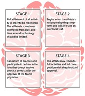 This is a Picture Of the Stages of a Concussion and When to get Back into the sport