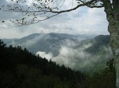 Picture of smoky Mountain