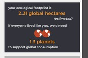 my website and score of ecological footprint website