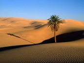 Places in the Sahara Desert: