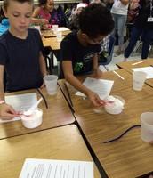 Fourth Grade STEM-Making  Crystal Snowflakes!
