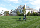 Methods for Picking out a Garden Servicing Company