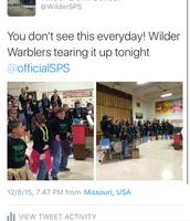 Warblers - fabulous fabulous fabulous