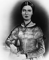 Emily Dickinson's Common Themes and Subject Matters