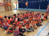 A sea of orange in Year 1