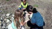 Discovering different types of rocks