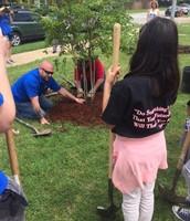 Dallas Mavs Plant Trees for Threes at Cary MS