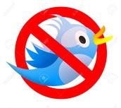 No bird!